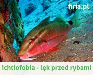 Ichtiofobia strach przed rybami
